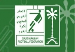دوري المحترفين السعودي